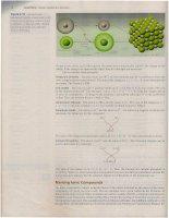 Chemistry part 4, Julia Burdge,2e (2009) pdf