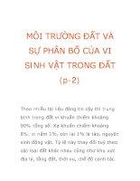 MÔI TRƯỜNG ĐẤT VÀ SỰ PHÂN BỐ CỦA VI SINH VẬT TRONG ĐẤT (p-2) ppt