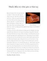 Thuốc điều trị viêm gân cơ bàn tay pot