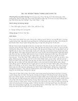 206 Bài thuốc Nhật Bản (Phần 7) pot