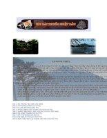 206 Bài thuốc Nhật Bản (Phần 1) pdf