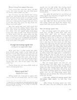 Atlas giải phẫu người - Phần nội tạng (Phần 9) pptx