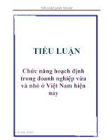 Tiểu luận: Chức năng hoạch định trong doanh nghiệp vừa và nhỏ ở Việt Nam hiện nay pptx