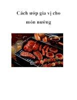 Cách ướp gia vị cho món nướng pdf