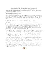 206 Bài thuốc Nhật Bản (Phần 11) pdf