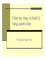 Bài giảng Viêm tủy răng và bệnh lý vùng quanh chóp  Thạc sĩ Nguyễn Ngọc Thúy