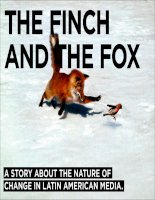 The Finch and The Fox: The Nature of Change in Latin American Media
