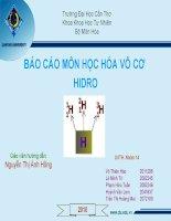 Báo cáo môn hóa vô cơ hidro potx