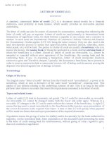 LETTER OF CREDIT (LC) docx