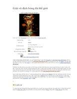 Lịch sử thú vị về Worldcup