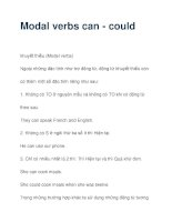 Modal verbs can - could pptx