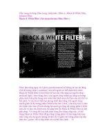 Cẩm nang sử dụng filter trong nhiếp ảnh - Phần 4 - Black & White filter, Infrared Filter pps