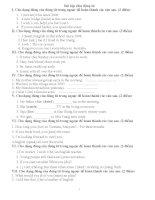 Bài tập chia đông từ dùng để ôn thi Bắc Giang