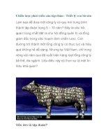 Chiến lược phát triển của tập đoàn - Triết lý con bò sữa pptx