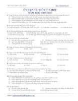 Câu hỏi ôn tập Tin 10 HKII 08-09