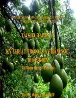 Tài liệu tập huấn - Kỹ thuật trồng và chăm sóc bưởi diễn pps