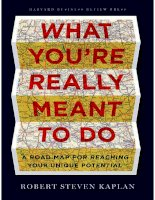 what youre really meant to do - robert steven kaplan