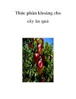 Thúc phân khoáng cho cây ăn quả pot