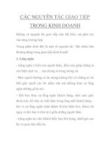 CÁC NGUYÊN TẮC GIAO TIẾP TRONG KINH DOANH pdf