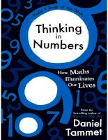 thinking in numbers how maths illuminates our lives