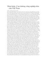 Thảo luận vấn đề công nghiệp hóa Việt Nam pot