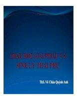 Bài giảng Thay đổi giải phẫu và sinh lý thai phụ  Thạc sĩ Võ Châu Quỳnh Anh