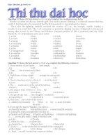 Đề thi thử cao đẳng, đại học môn tiếng anh - Đề số 4 ppt