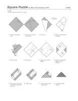 Square Puzzle ppt