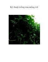 Kỹ thuật trồng rau mồng tơi pdf