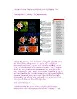 Cẩm nang sử dụng filter trong nhiếp ảnh - Phần 5 - Close-up Filter Close-up Filter ( pps