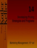 Developing Pricing Strategies and Programs doc