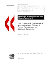 the trade and trade policy implications of different policy responses to societal concerns