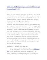 Chiến lược Marketing trong kỷ nguyên số: Khuyến nghị cho doanh nghiệp Việt pdf