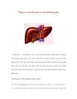 Nguy cơ ung thư gan và cách phòng ngừa pps