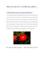 Mười vạn câu hỏi vì sao Hóa học, phần 4. pdf