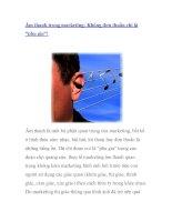 """Âm thanh trong marketing: Không đơn thuần chỉ là """"phụ gia""""! pdf"""