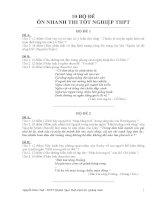 10 bộ đề ôn thi tốt nghiệp THPT Văn