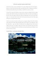10 lâu đài, cung điện cổ nguy nga nhất thế giới pdf