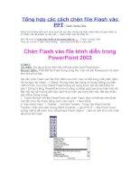 Tổng hợp các cách chèn Flash vào Powerpoint