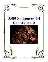 3500 Sentences Of Certificate B pdf