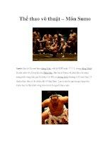 Thể thao võ thuật – Môn Sumo pdf