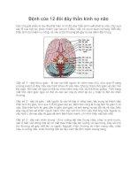 Bệnh của 12 đôi dây thần kinh sọ não doc