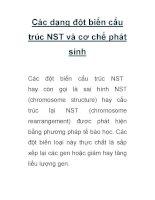 Các dạng đột biến cấu trúc NST và cơ chế phát sinh docx