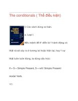 The conditionals ( Thể điều kiện) I) ppt
