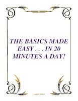 THE BASICS MADE EASY . . . IN 20 MINUTES A DAY! potx