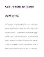Các trợ động từ (Modal Auxiliaries) pdf