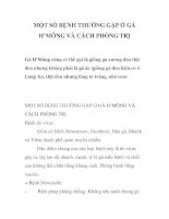 MỘT SỐ BỆNH THƯỜNG GẶP Ở GÀ H'MÔNG VÀ CÁCH PHÒNG TRỊ pptx