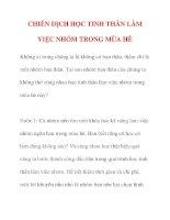 CHIẾN DỊCH HỌC TINH THẦN LÀM VIỆC NHÓM TRONG MÙA HÈ pdf