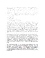 Bài tiểu luận: Quá trình lưu thông của vàng doc