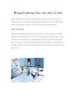 Bí quyết phong thủy cho nhà vệ sinh Phong thuỷ hiện đại cũng đề ra những đặc pdf